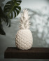 GNL_WEB_Lifestyle_PineappleWhite_day-Editar-580x580