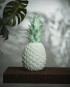 GNL_WEB_Lifestyle_PineappleMint_day-Editar-580x580
